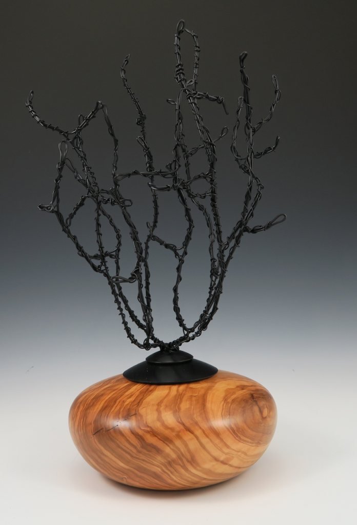 Frank DiDomizio - Hollow form with Wire Sculpture Insert